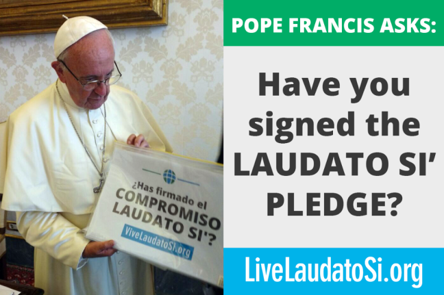 vive laudato si.png